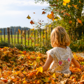 October 2020 Half Term Guide